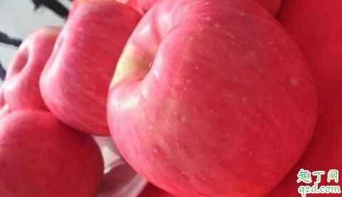 片红苹果与条红苹果哪个营养高 片红苹果和条红苹果怎么选择4