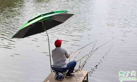 怎样靠钓鱼赚钱 渔具店进货渠道一览20203
