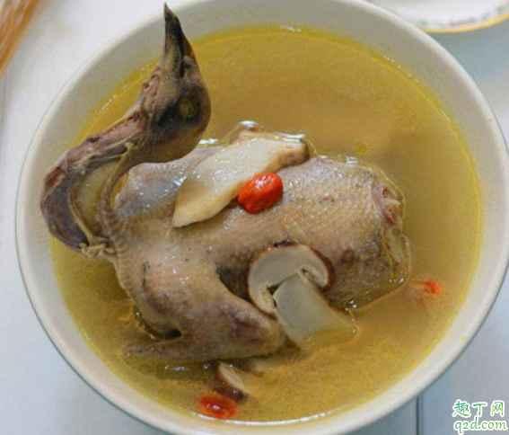 剖腹产喝鸽子汤要放姜吗 产后喝鸽子汤补气血吗2