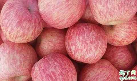 片红苹果与条红苹果哪个营养高 片红苹果和条红苹果怎么选择6